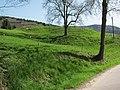 07 Fischerbach Castle.JPG