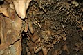 099 Helictites & stalactites 4 (8316561375).jpg