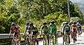 10 Etapa-Vuelta a Colombia 2018-Ciclistas en el Peloton 6.jpg