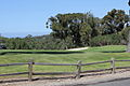 11th hole at Palos Verdes Golf Club, Palos Verdes Estates, CA.jpg