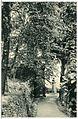 13597-Tharandt-1911-Forstgarten-Brück & Sohn Kunstverlag.jpg