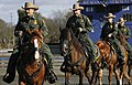 170118-BP-Horse-Demo-GF-547 (31545591624).jpg
