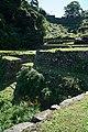 171008 Shingu Castle Shingu Wakayama pref Japan04n.jpg