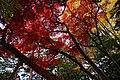 171102 Nanshoso Morioka Iwate pref Japan18s3.jpg