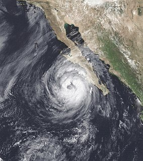 Hurricane Lester (1992) Category 1 Pacific hurricane in 1992