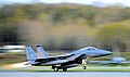 19th Fighter Squadron's F-15 Eagle.jpg