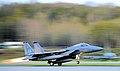 19th Fighter Squadron's F-15 Eagle.jpg