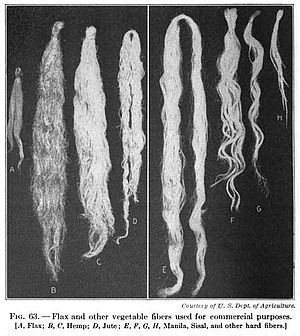 Natural fiber - 19th century knowledge weaving flax, hemp, jute, Manila hemp, sisal and vegetable fibers