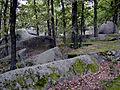 2004-09-12 Gmünd Naturpark Blockheide 03.JPG