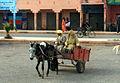 2008 - Marocko - vägen från Agadir till Marrakech 1.JPG