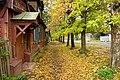 2009 10 08 Осенняя улица 2.jpg