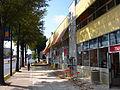 2009 10 13 - 0095 - Wheaton - Georgia Crossing.jpg