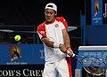 2011 Australian Open IMG 6356 (5448427764).jpg