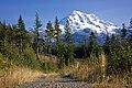 2011 Mount Rainier.jpg