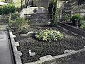 2012-04-01 Bonn Friedhof Poppelsdorf Annemarie Suckow von Heydendorff (1).JPG