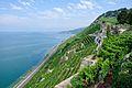 2012-08-12 10-23-47 Switzerland Canton de Vaud Rivaz.JPG