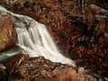 2012-11-16 13-41-16-cascade-savoureuse.jpg