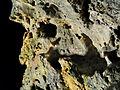 2012-12-12 21-42-10-roche-77f.jpg