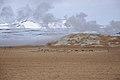 2014-04-28 16-51-20 Iceland - Mývatni Reykjahlíð.JPG