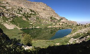 Griswold Lake (Nevada) - Image: 2014 07 25 09 34 36 View west across Griswold Lake from the trail to Ruby Dome east of the lake