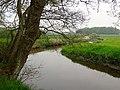 20140429 Drentsche Aa nabij Schipborg2.jpg