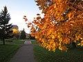 2014 10 20a Oct Roadtrip Moose Jaw 012 (15012995124).jpg
