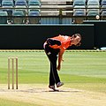 2015–16 WBBL PS v ST 15-12-28 Cleary.JPG