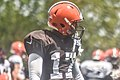 2016 Cleveland Browns Training Camp (28614791161).jpg