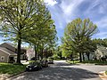 2020-05-02 11 21 34 View south along Thorngate Drive near Brass Harness Court in the Franklin Farm section of Oak Hill, Fairfax County, Virginia.jpg