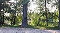 20200912 170720 Park Piłsudskiego in Łódź.jpg