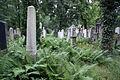 2334viki Cmentarz Żydowski na Ślężnej. Barbara Maliszewska.jpg
