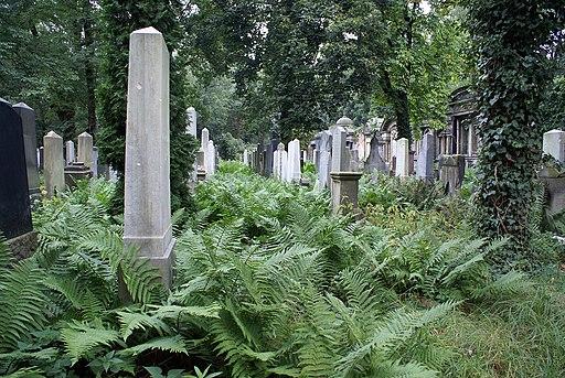 2334viki Cmentarz Żydowski na Ślężnej. Barbara Maliszewska