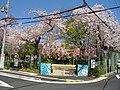2 Chome Nakasakurazuka, Toyonaka-shi, Ōsaka-fu 561-0881, Japan - panoramio - yokoyokoi (1).jpg