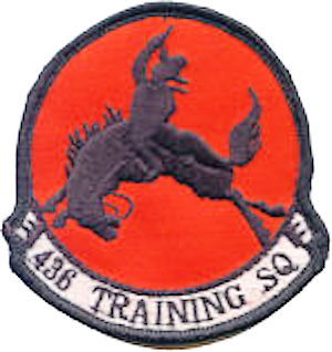 436th Training Squadron - ACC - Emblem