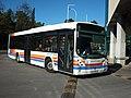 562 ScottUrb - Flickr - antoniovera1.jpg