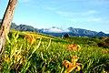 983, Taiwan, 花蓮縣富里鄉新興村 - panoramio (14).jpg