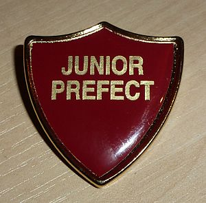 Aylesbury Grammar School - A Junior Prefect badge