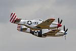 A Pair of Mustang P-51s (5927457346).jpg