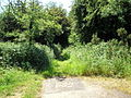 A bridleway no more, Limpsfield, Surrey - geograph.org.uk - 184051.jpg