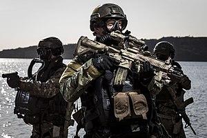 Korps Commandotroepen - Korps Commandotroepen