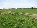 A farm track - geograph.org.uk - 1266932.jpg