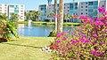 A look at Building D, Meadowbrook Lakes Condominium, Dania Beach, Florida - panoramio.jpg