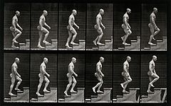 A man walking up stairs. Photogravure after Eadweard Muybrid Wellcome V0048642.jpg