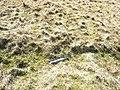A piece of wreckage from a Martin B-26 Marauder - geograph.org.uk - 428898.jpg