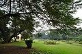 Acharya Jagadish Chandra Bose Indian Botanic Garden - Howrah 2011-02-20 1562.JPG