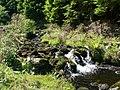 Afon Fwy - geograph.org.uk - 1572694.jpg