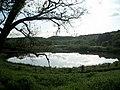 Afon llan lake in Penllergaer woods - geograph.org.uk - 982205.jpg