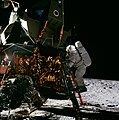 Alan Bean on the ladder of LM.jpg