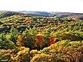 Algonquin Provincial Park- Fall Colour-Ontario.jpg