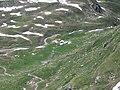 Alp Mos as seen from Piz Settember.jpg